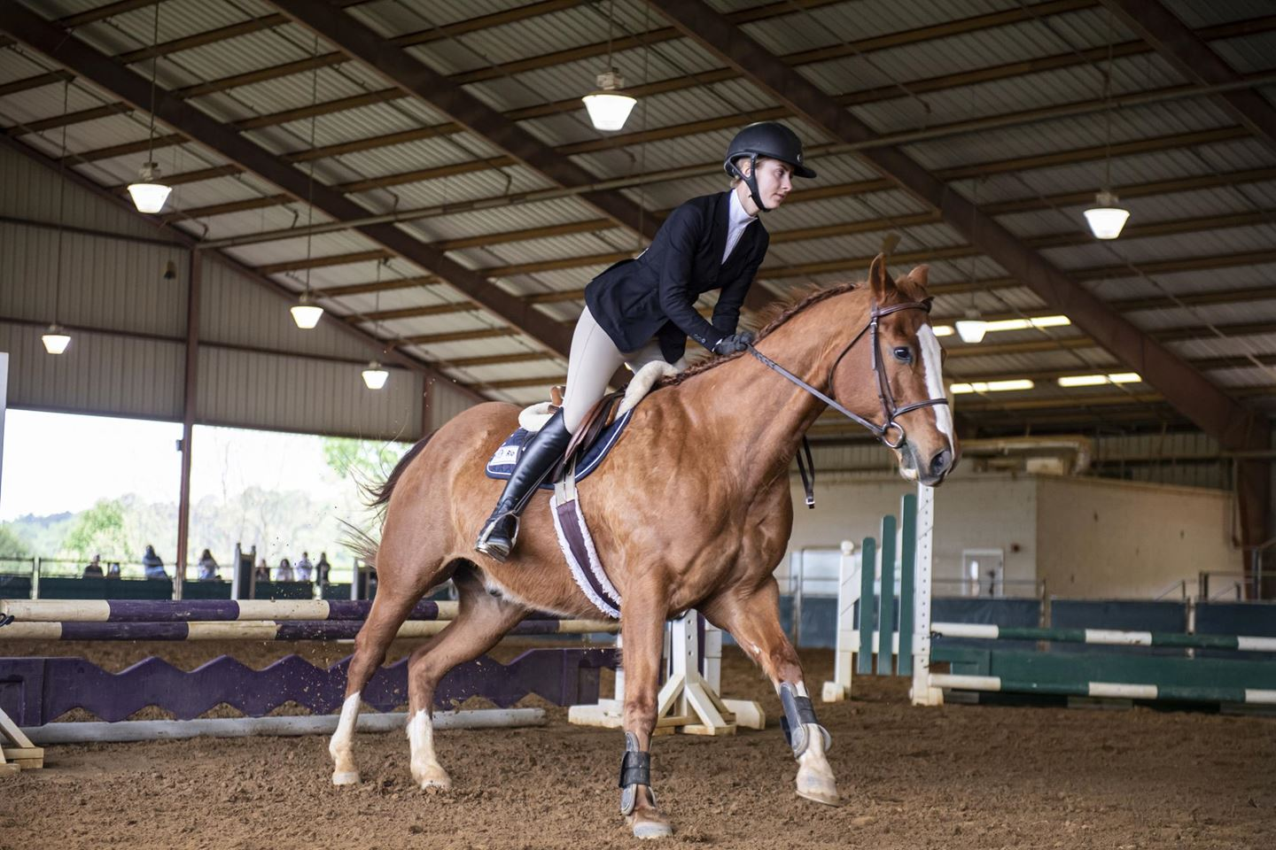 Madeiros Named Reserve High Point Rider (Equestrian Events)